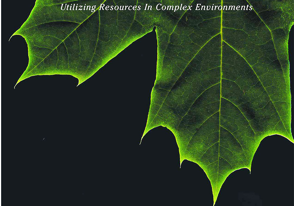 Utilizing Natural Resources Lecture Series