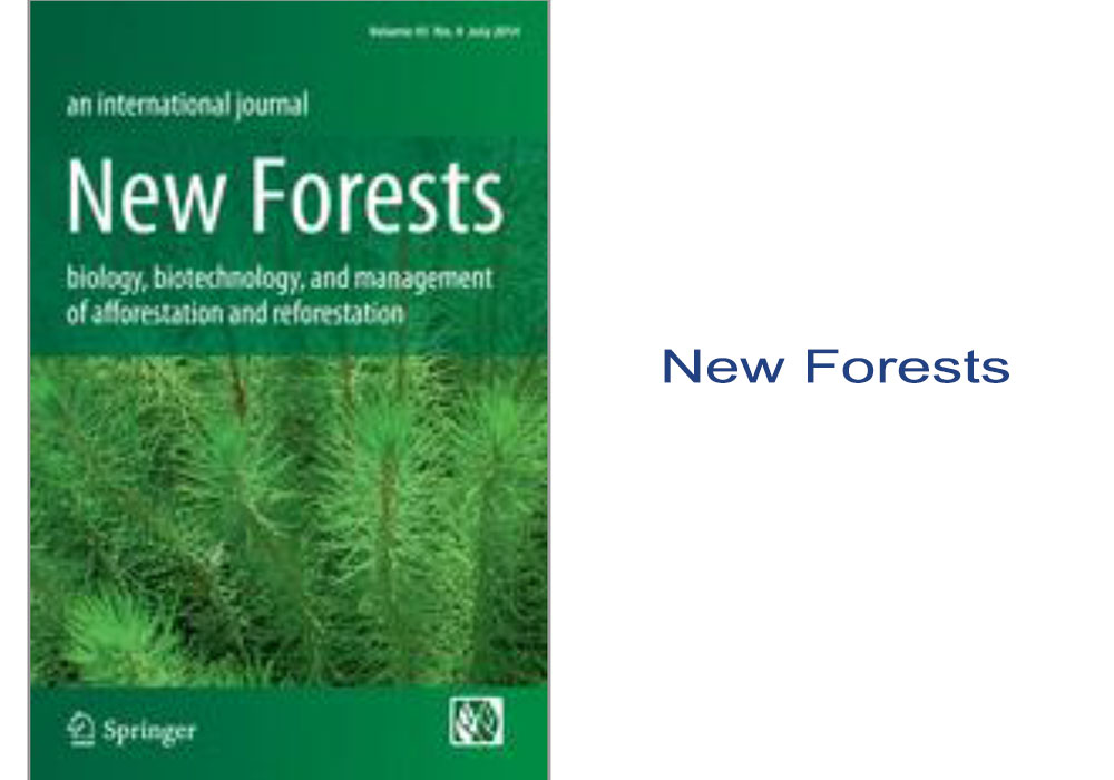 New Forests Article Editing