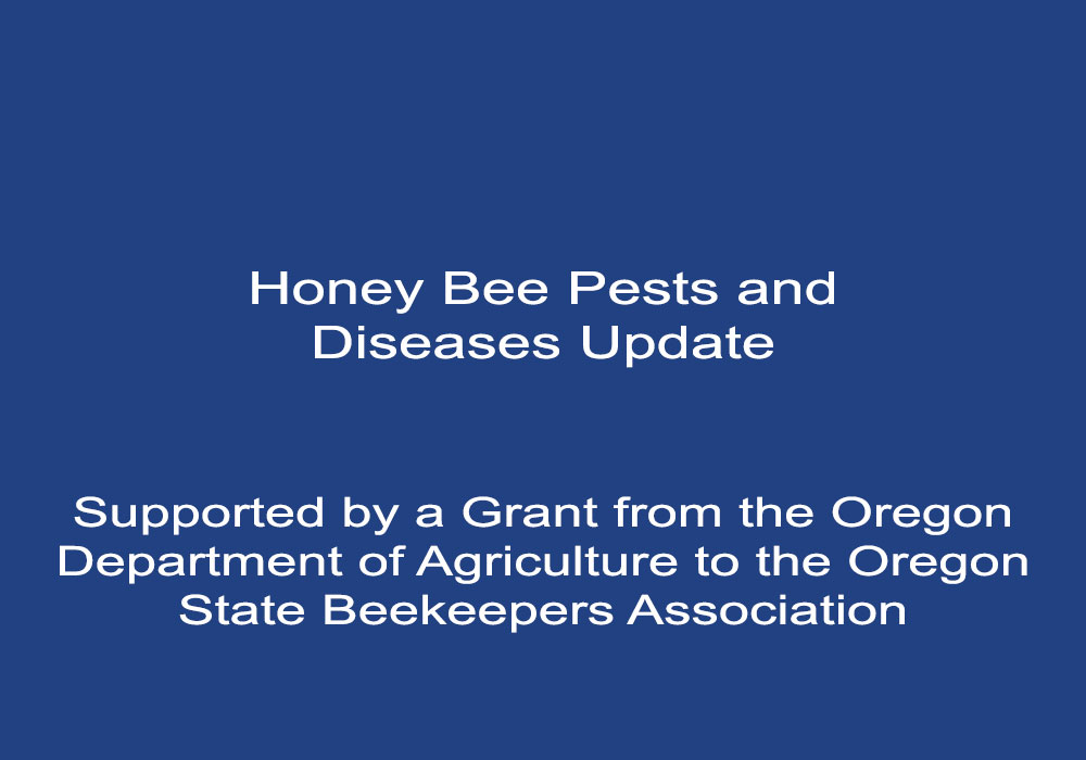 Honey Bee Pest and Disease Update